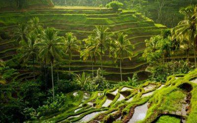Gleaming Bali Tour