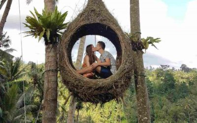 Bali Swing Ubud Tour