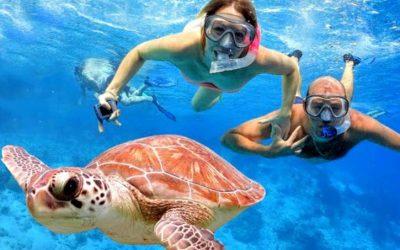 Blue Lagoon Snorkeling