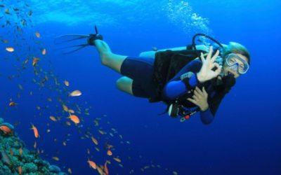 Introductory Scuba Dives