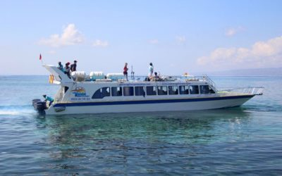Gili Fast Boat Transfer for Trips To Lombok and Gili Islands