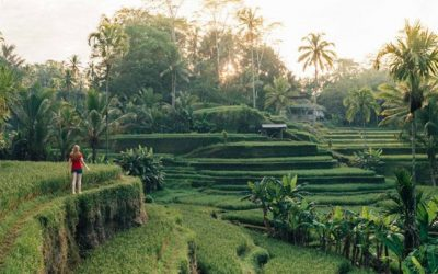 Trip to Top Destination of Bali