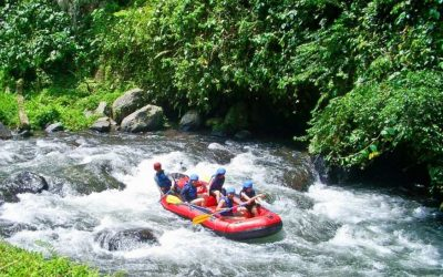 Bali Swing River Rafting