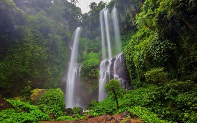 Best Waterfalls Tour in Bali