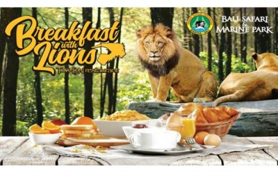 Bali Safari B.fast w/ The Lions